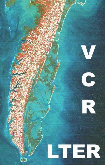 VCR LTER Logo