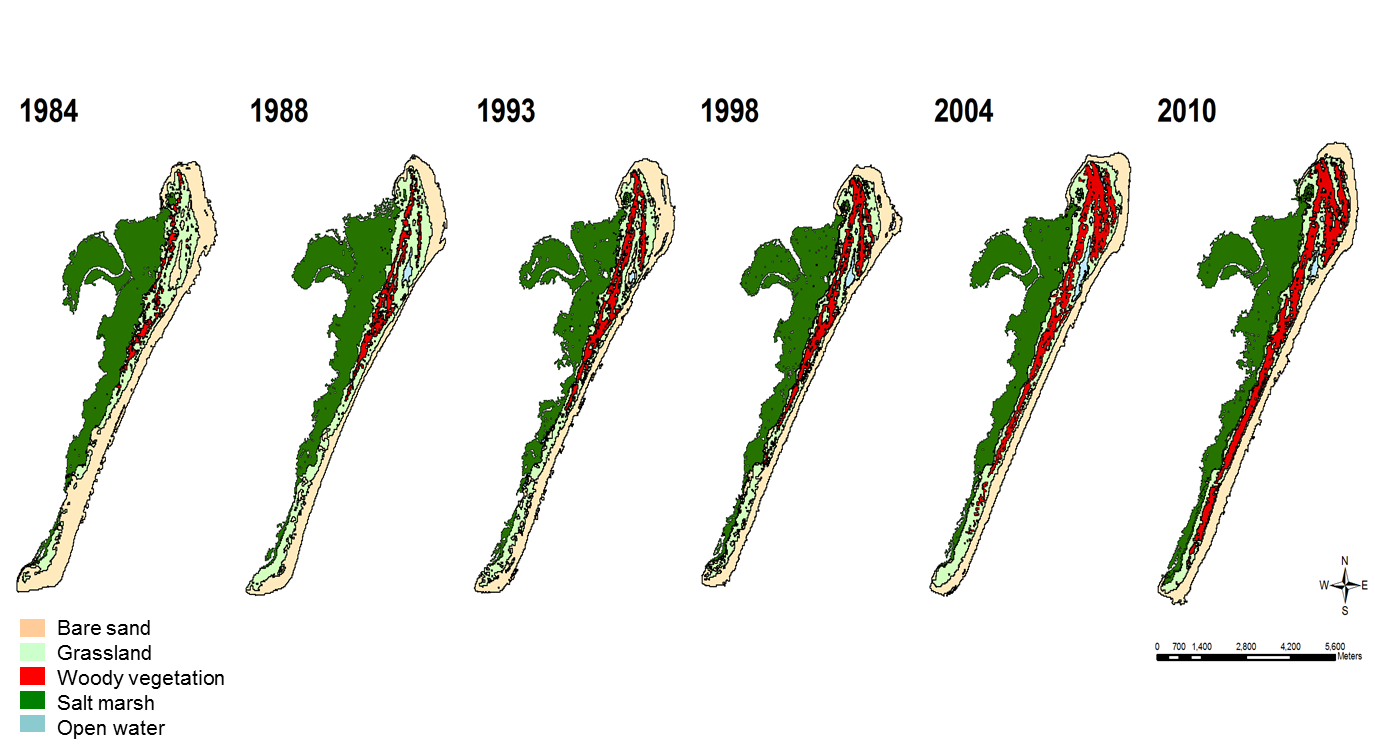 Maps of shrub change