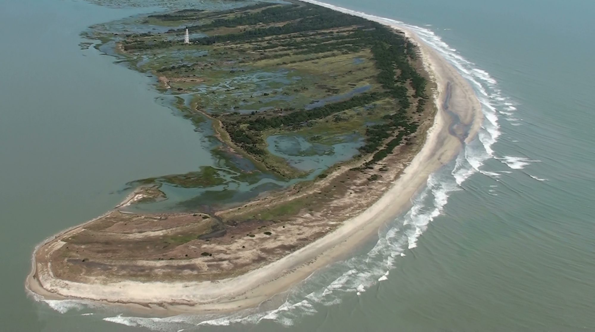 Virginia Coast Reserve Long-Term Ecological Research