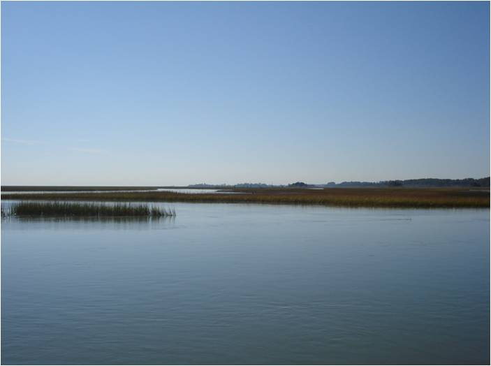 Tidal Marsh in the VCR LTER